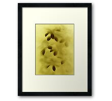 Abstract plant... Framed Print