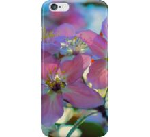 May Pastels iPhone Case/Skin