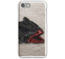 12 Origins iPhone Case/Skin