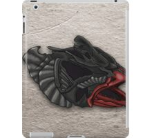 12 Origins iPad Case/Skin