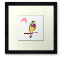 Finch on a white Background Framed Print