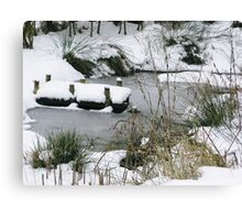 Winters Tale Canvas Print