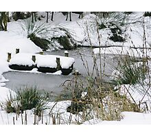 Winters Tale Photographic Print