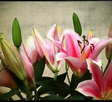 Lillies by Paul Clifford Bannister