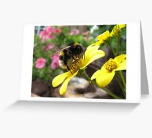Bumble-bee at work Greeting Card