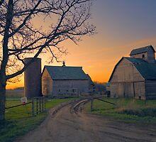 Birch Barn 2 by LynyrdSky