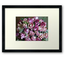 Old Pink Framed Print