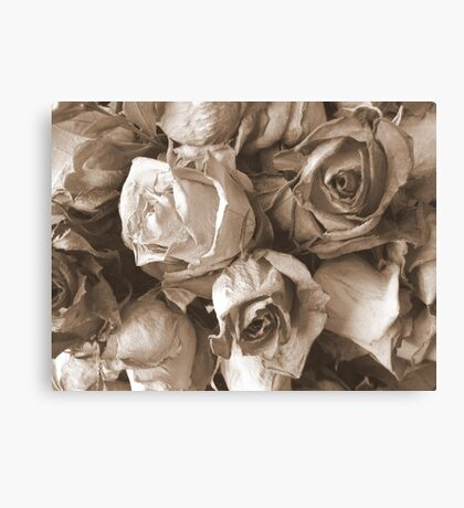 Old and crumpled Canvas Print