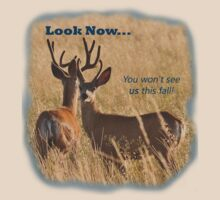 You Won't See Us this Fall! by Donna Ridgway