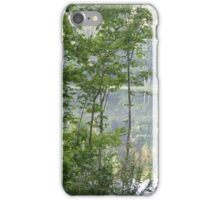 God's Picture Frame iPhone Case/Skin