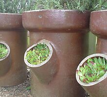 Sewer pipe planters by Paul Morley