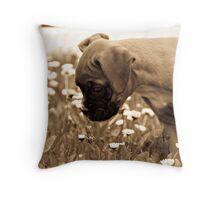 The Daisy Hunter Throw Pillow