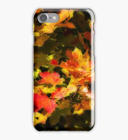 Maple leaves - Orton-ized iPhone Case/Skin