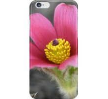 Macro Garden iPhone Case/Skin