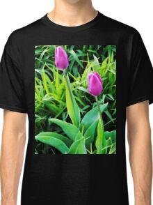 Two Tulips  Classic T-Shirt