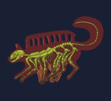 catbus x-ray red by cloakatak