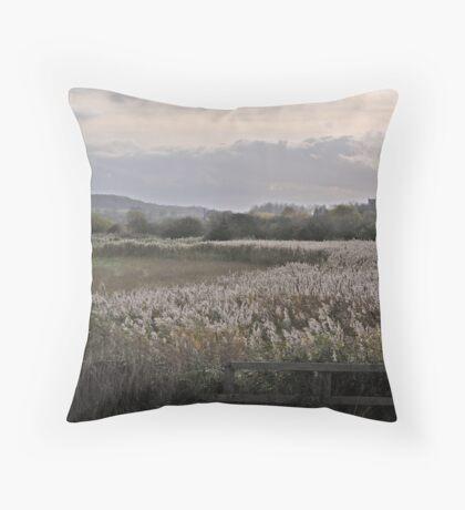 Inland Throw Pillow