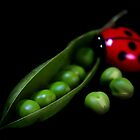 Green Peas by jerry  alcantara