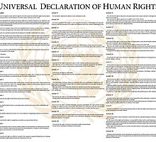 Universal Declaration of Human Rights by wetdryvac