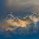 Clouds of Horses by Nancy Stafford
