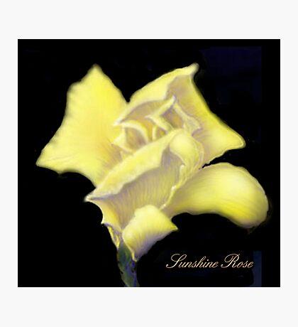 'Sunshine' Rose Digital Painting, Baroque Roses Photographic Print