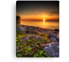 Violet Sunrise Canvas Print