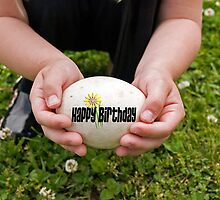 Egg-Sighting Birthday by Maria Dryfhout