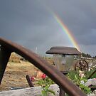 rainbow in the back yard by conilouz