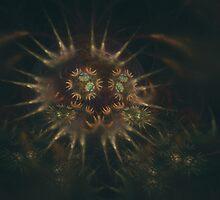 Anemonea by Darren DeSantis