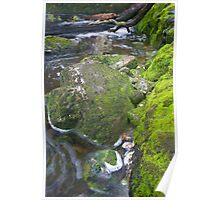 Mossy River Poster