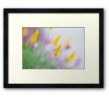 Springtime Wonder Framed Print