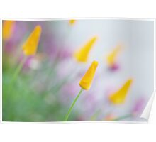 Springtime Wonder Poster