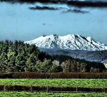Mt Ruapehu From Fraser Rd, Hawera by Mike Rowley