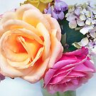 Roses and Hydrangeas by Roz McQuillan