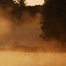 An early morning forest lake impression by jchanders