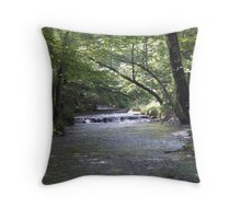 rush of the day Throw Pillow