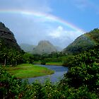 Waimea Valley in a Dream by Lesley Ortiz