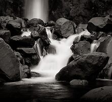 Dawson Falls, Egmont National Park, NZ by Dean Mullin