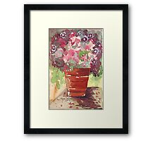 Dianthus in Terracotta Pot Framed Print