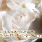 Take Peace! by Patricia L. Walker