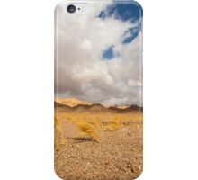 Dead dry grass in the Aravah Desert, Israel iPhone Case/Skin