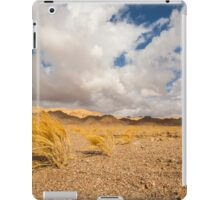 Dead dry grass in the Aravah Desert, Israel iPad Case/Skin