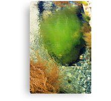 Sea Shrubs Canvas Print