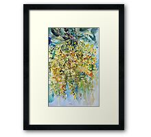 Yellow acacia Framed Print