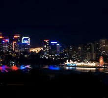 Sydney Harbor From Observatory Hill by Zachary Law