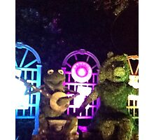 Kermit and Miss Piggy- EPCOT Flower and Garden Show Photographic Print