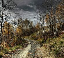 Autumns Road by Heather  Waller-Rivet  IPA