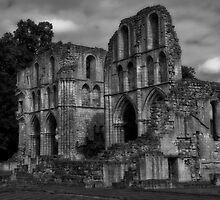 Black & White Collection - Ruined Abbey 1 by Martin Liggett