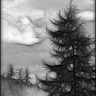 Moody Sky. by Nina Toulmin