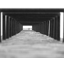 Patterned Palisade by Gary  Oertel